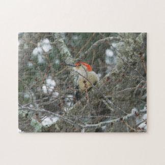 Woodpecker | 252 piece photo puzzle