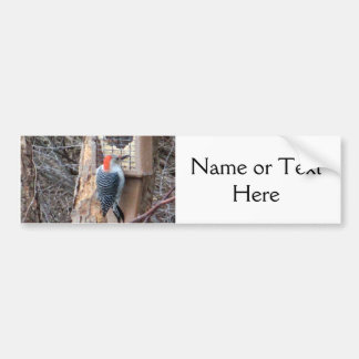Woodpecker at Bird Feeder Bumper Sticker