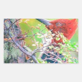 Woodpecker at Forest Pecking Rectangular Sticker