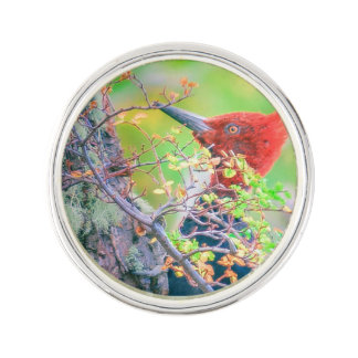 Woodpecker at Forest Pecking Tree Lapel Pin