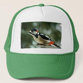 Woodpecker multicolored woodpecker - photo: Jean Trucker Hat