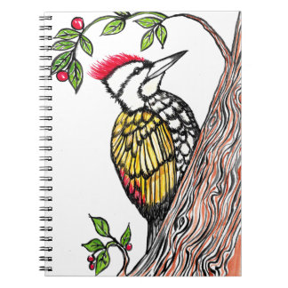 Woodpecker Notebooks