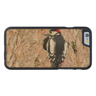 woodpecker on his tree carved maple iPhone 6 case