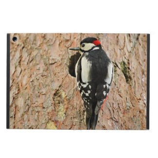 woodpecker on his tree case for iPad air