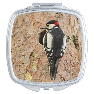 woodpecker on his tree mirror for makeup