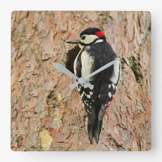 woodpecker on his tree square wall clock