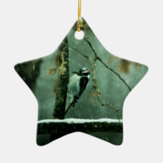 Woodpecker Snow Ornament