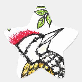 Woodpecker Star Sticker
