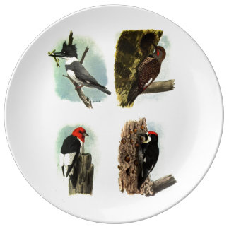 "Woodpeckers 10.75"" Decorative Porcelain Plate"