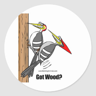 woodpeckers boinking, woodpeckers mating classic round sticker