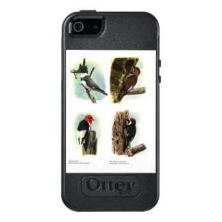 Woodpeckers OtterBox iPhone SE/5/5s Symmetry Case