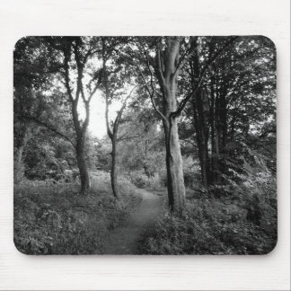 Woods Bute Park, Cardiff Mouse Pads