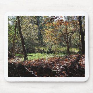 woods in autumn mouse pad