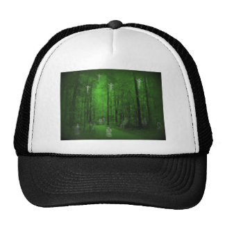 Woods of the Dead Hat
