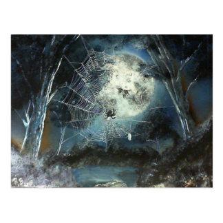 Woods Spider Postcard