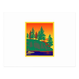 Woods & Water Scene Postcard