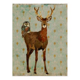 Woodsy Elk & Teal Owl Damask Postcard