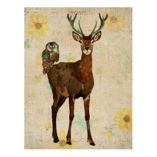Woodsy Elk & Teal Owl Postcard