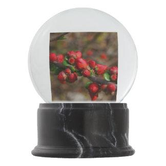 Woody Red Blooms Snow Globe
