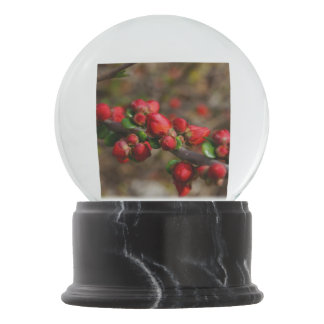 Woody Red Blooms Snow Globes