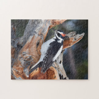"""Woody Woodpecker"" in Rocky Mountain National Park Jigsaw Puzzle"