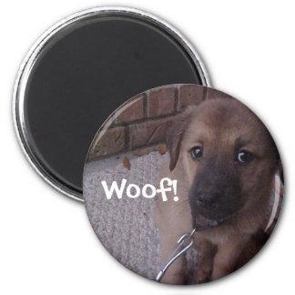 Woof! Magnet