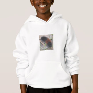 Woolly Bear Caterpillar Sweatshirt