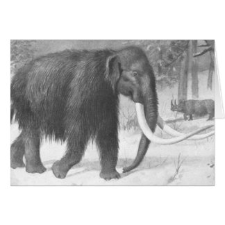 Woolly Mammoth Antique Print Card