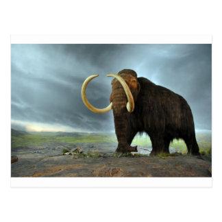 Woolly Mammoth Mod Destiny Postcard