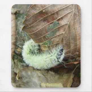 Wooly Bear Worm Mousepad