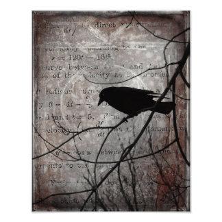 Words Of Crow Photo