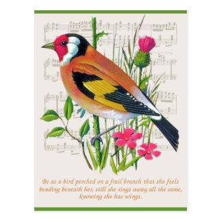 Words of Encouragement Postcard