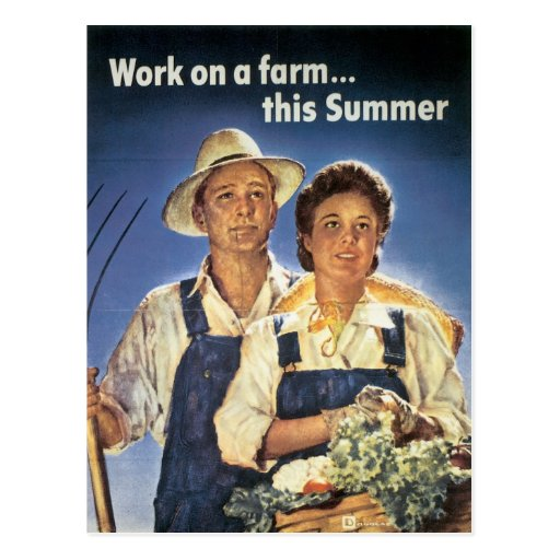 Work on a Farm...This Summer Postcard