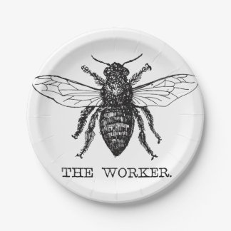 Worker Bee Bumblebee Honey Antique Illustration 7 Inch Paper Plate
