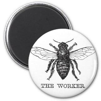 Worker Bee Bumblebee Honey Antique Illustration Magnet