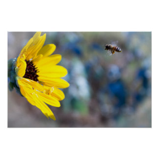 Worker Bee Poster