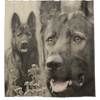 Working German Shepherd Dog  - GSD Shower Curtain