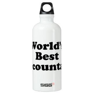World's Best Accountant Water Bottle