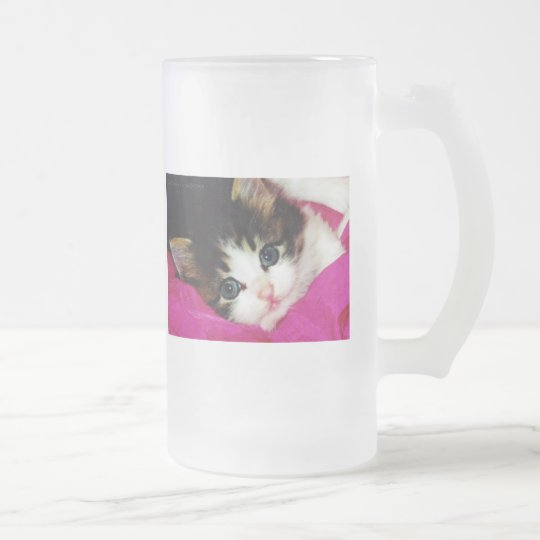 Worlds Cutest Kitten Frosted Glass Beer Mug