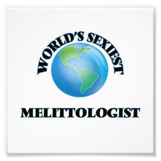 World's Sexiest Melittologist Photographic Print