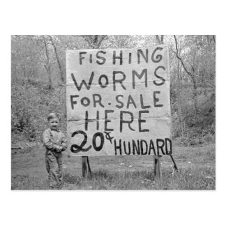 Worms For Sale, 1935 Postcard