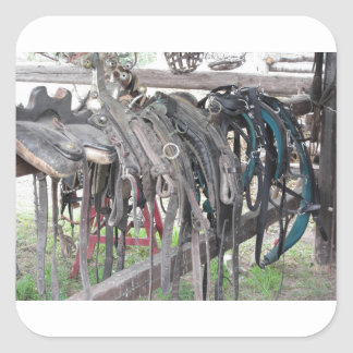 Worn leather horse bridles hanging on wooden fence square sticker
