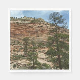 Worn Rock Walls in Zion National Park Paper Serviettes