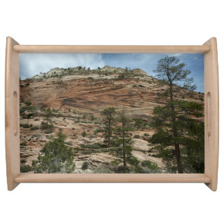Worn Rock Walls in Zion National Park Serving Tray