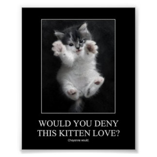 Would you deny this kitten love? Poster