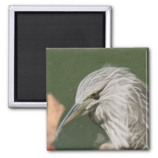 Woven Night Heron Magnet