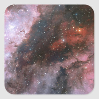 WR 22 and Eta Carinae regions of the Carina Nebula Square Sticker