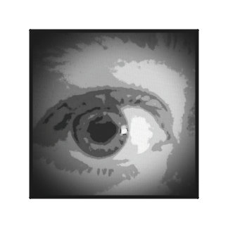 Wrapped Canvas Black and White Eye