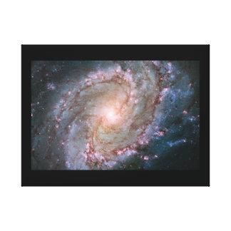 Wrapped Canvas (Gloss) Southern Pin Wheel Galaxy