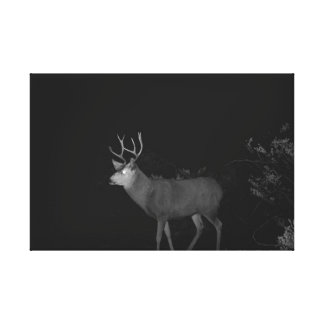 WRAPPED CANVAS WALL ART OF MULE DEER GALLERY WRAP CANVAS